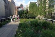 High Line, New York, NY, USA