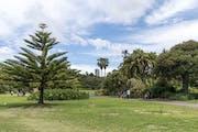 Sydney: Syndey Botanical Garden