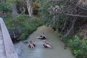 Eli Creek, Fraser Island, QLD, Australia
