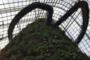 Marina Gardens Drive, Flower Dome, Singapore
