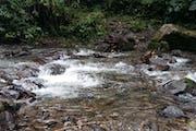 Boquete: Sendero los Quetzales Trail