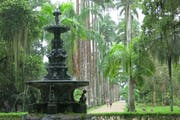 Jardim Botânico do Rio de Janeiro, Rua Jardim Botânico, Jardim Botânico, Rio de Janeiro