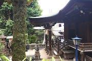 Ueno Park, 8, Uenokōen, Taito City