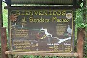 Sendero Macuco, Misiones Province, Argentina