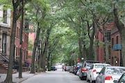 New York City: Stroll through Brooklyn