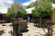 Pisco Elqui: Visit to a traditional pisqueria